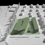 Die Visualisierung zeigt die Dimensionen des geplanten Reiseterminals samt Wohnüberbauung entlang der Schaffhauserstrasse (Pappelallee) mit Sicht aus Westen. (Bild: PD/Architektur Strut)