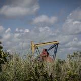 Ein Pumpenheber des venezolanischen Erdölkonzerns PDVSA, welcher im Visier der Justiz ist. (Bild: Bloomberg, El Tigre, 14. Oktober 2018)