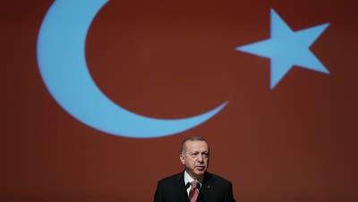 Der türkische Präsident Recep Tayyip Erdogan regiert das Land mit eiserner Faust. (Bild:Presidential Press Service/AP, Ankara, 24. Januar 2019)