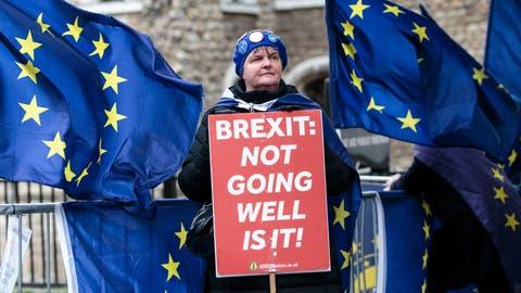 Eine Britin demonstriert vor dem Parlament gegen den Brexit. (Bild: Jack Taylor/Getty, London, 13. März 2019)