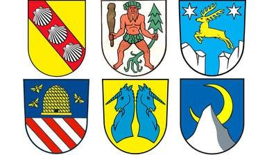 Tagblatt-Quiz – Runde 7: Muscheln, blaue Einhörner und Waldmenschen: Wie gut kennen Sie die Ostschweizer Gemeindewappen?