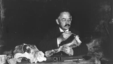 Emil Bächler untersucht einen Knochen. (Quelle: Stadtarchiv St.Gallen)