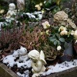 Diesen Frühling werden auf dem Friedhof Arbon die ältesten Kindergräber aufgehoben. (Bild: Donato Caspari)