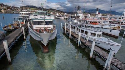 Der Hafen bei der SGV-Werft verlandet zunehmend. (Bild: Boris Bürgisser, 8. März 2019)