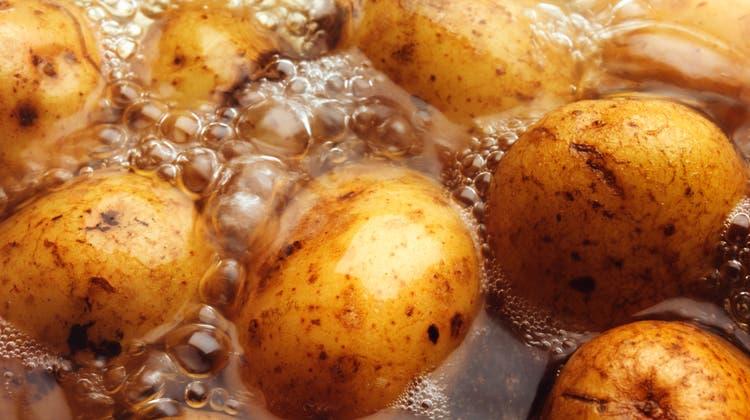 Was unterscheidet mehlige von festkochenden Kartoffeln?