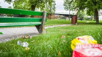 Obwohl der Abfallkübel nicht weit entfernt ist, landet im Frauenfelder Lindenpark allerlei Abfall auf dem Boden. (Bild: Andrea Stalder)
