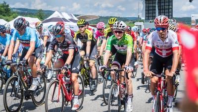 Auch Velofahrer: Die Tour de Suisse vergangenen Sommer auf der Grossen Allmend. (Bild: Andrea Stalder)