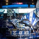 Eklat beim Spiel gegen Bern: EVZ-Fan geht auf Schiedsrichterchef Brent Reiber los
