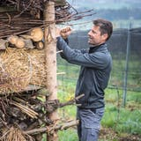 Roland Lenz bei einem «Lebensturm» in einem Rebberg, der Insekten und anderen Kleinlebewesen Unterschlupf bietet. (Bild: Reto Martin)