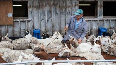 Emmi übernimmt Mehrheit an österreichischer Ziegenmilch-Firma Leeb