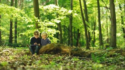iPads im Wald: So besteht die Ablenkungsgefahr sogar in der freien Natur. (Bild: Getty)