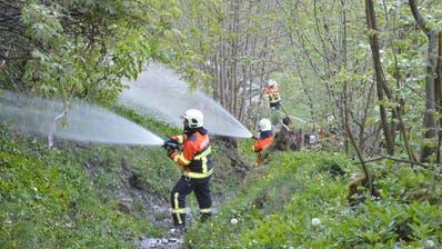 Die Feuerwehr Engelberg bei einer Waldbrand-Übung. (Bild: PD/Kili Röthlin)