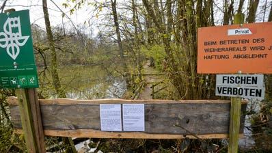 Der Eigentümer des Uttwiler Weihers hat den Fussweg über den Weiher mit Brettern versperrt. (Bild: Donato Caspari)