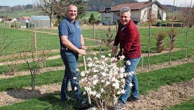 Kein Gärtlidenken: Andwiler Gartenbauer spannen zusammen