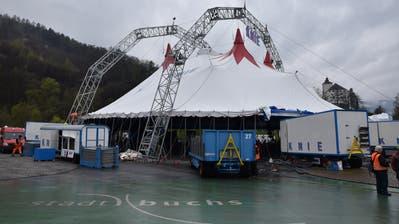 Der Circus Knie schlägt sein neues Zelt in Buchs auf