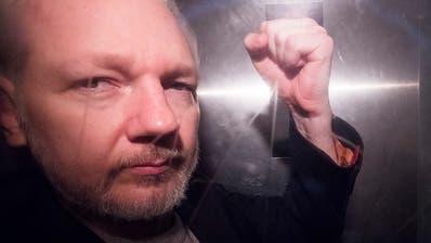 Vergewaltigungs-Vorwurf: Schweden nimmt Ermittlungen gegen Wikileaks-Co-Gründer Assange wieder auf