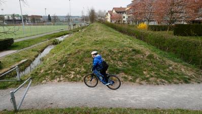 Zug: Der alte Bahndamm Schleifi der zwischen der Gartenstadt und den Sportanlagen Herti hindurchführt soll ein Veloweg werden. Nun zeigt sich dass dieser ökologisch sehr wertvoll ist, da Tiere diesen als Korridor in die Stadt dient.-------(Bild: Stefan Kaiser, Zug, 02. April 2019)