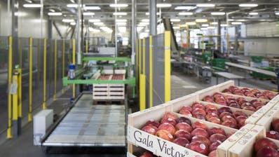 Fenaco investiert 200'000 Franken gegen Landwirtschafts-Initiativen