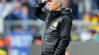 Dortmund geht «definitiv» mit Favre in die nächste Saison