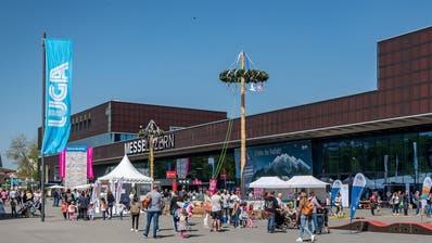 Der Maibaum steht vor der Luga. (Bild: Messe Luzern)