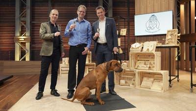 Martin Sailer präsentierte seine Hunde-Intelligenzspielein der Sendung «Höhle der Löwen». (Bild: PD)
