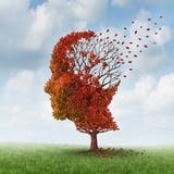 Wie ein Blatt im Herbst: Bei Demenz lösen sich die Erinnerungen und kehren nicht wieder zurück. (Bild: fotolia)