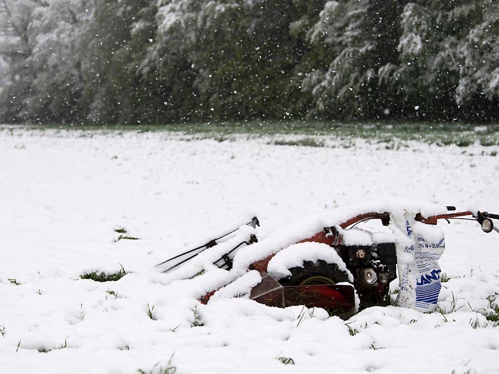 Nichts mit Mähen: Schneebedeckte Landmaschine in Kirchdorf BE. (Bild: KEYSTONE/PETER SCHNEIDER)