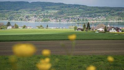 Vorwurf der Phantomplanung: Der zukünftige Steckborner Sportplatz wird zu einem Neben-Kriegsschauplatz der Scheitingerwiese