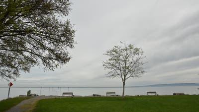 Die Bucht der Luxburgwiese: Hier wollte der Gemeinderat einen Aussichtsturm bauen lassen. (Bild: Markus Schoch)