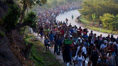 Trump kündigt Ausweisung von Millionen Migranten an