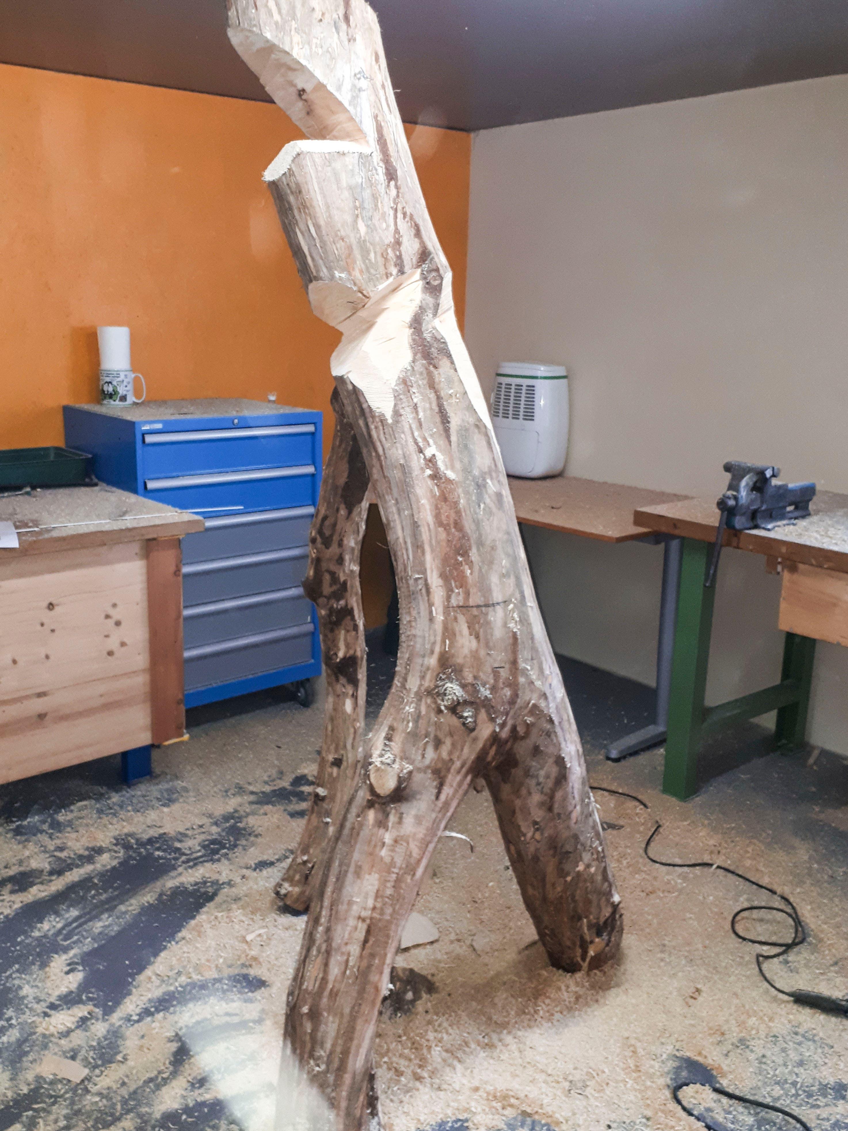 Daniel Rickenbach dokumentiert die Entstehung seiner Holzfiguren jeweils mit Fotos. (Bild: PD/Daniel Rickenbach)