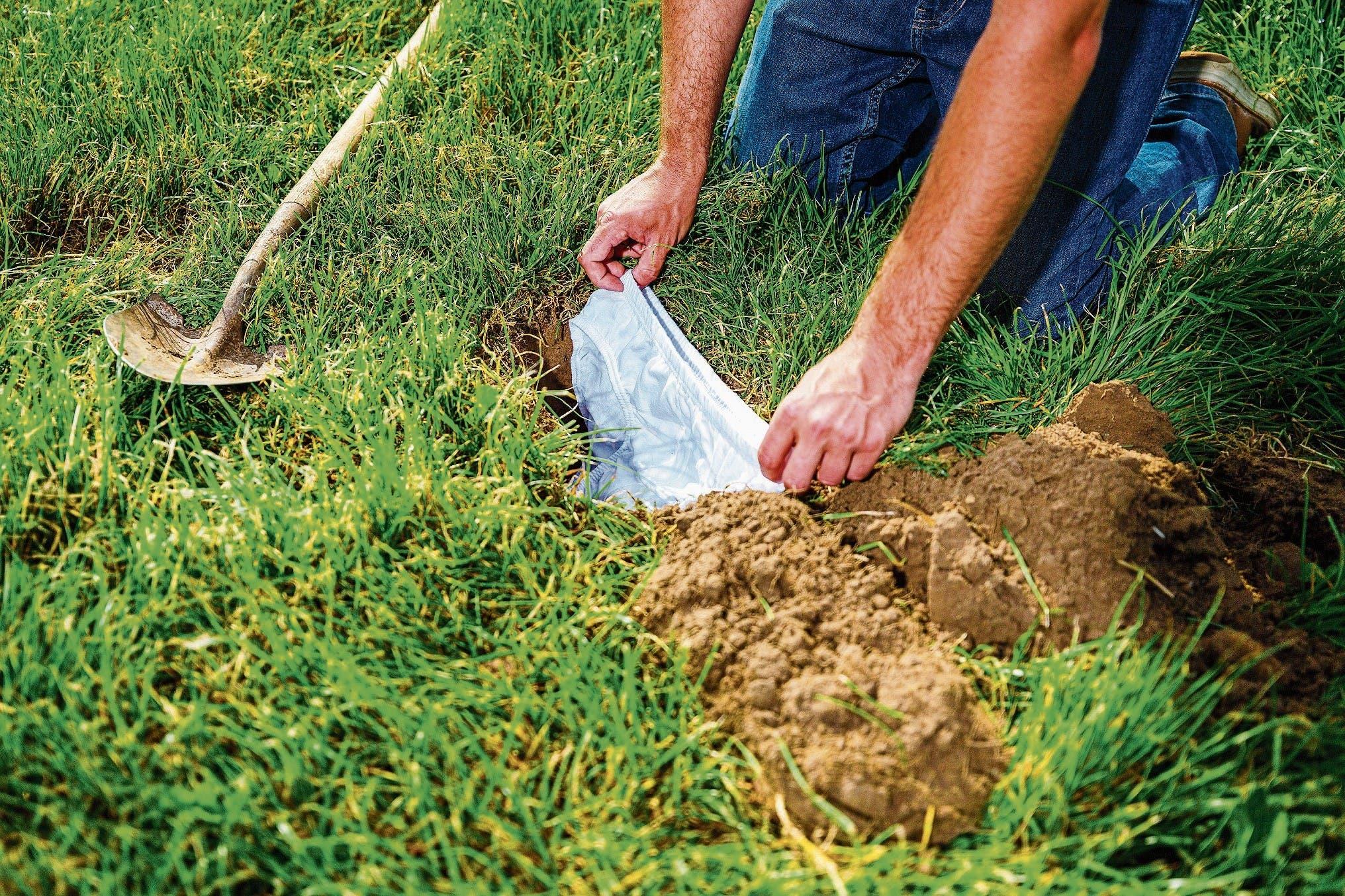 Eine Baumwollunterhose wird eingegraben und damit zum Indikator für die Vielfalt an zersetzenden Kleinlebewesen im Boden. (Bild: Nicolas Zonvi)