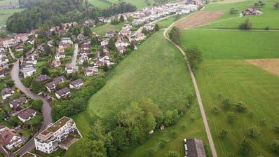 Im Gebiet Fenn-Geissberg gibt es neu Platz für Mehrfamilienhäuser