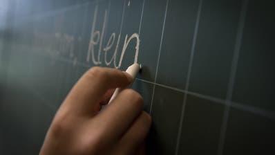 Der Kanton Luzern lanciert ein Projekt für Erwachsene. (Bild: Pius Amrein, Meierskappel, 1. Juli 2013)