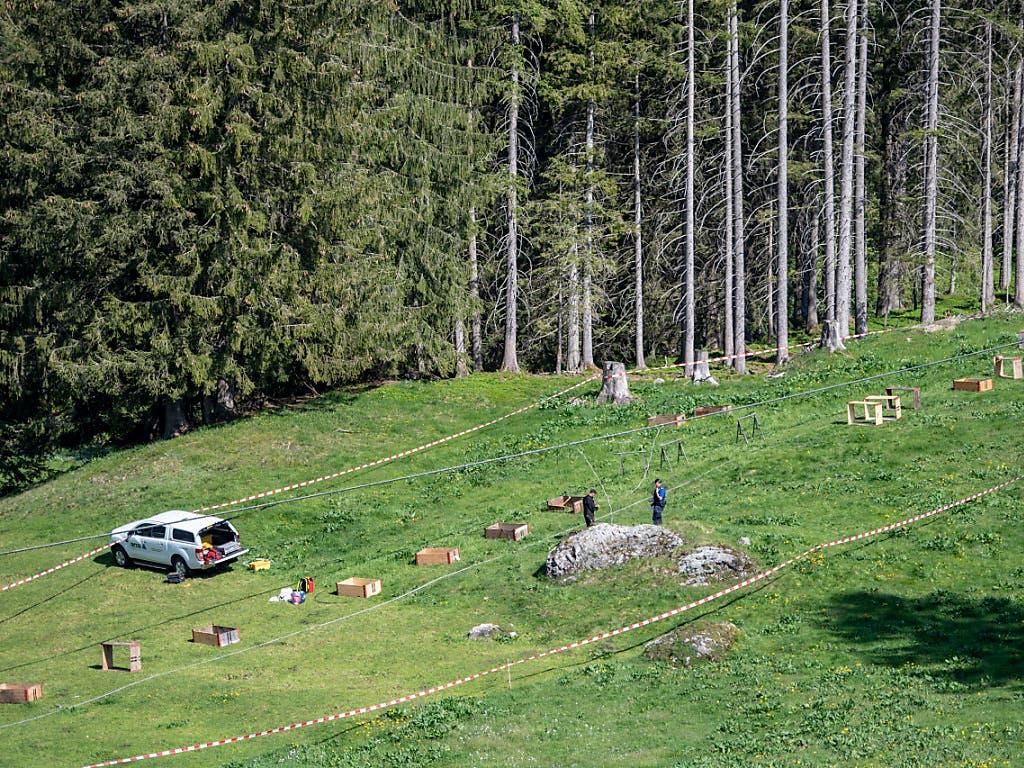 Die Unfallstelle liegt auf rund 1300 Metern über Meer im Gebiet Gerschnialp. (Bild: KEYSTONE/URS FLUEELER)