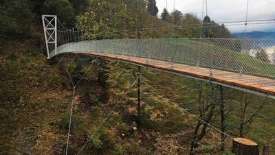 Pylon und Abspannung der neuen Hängebrücke. (Bild: Andreas Haefele jun., 2018)