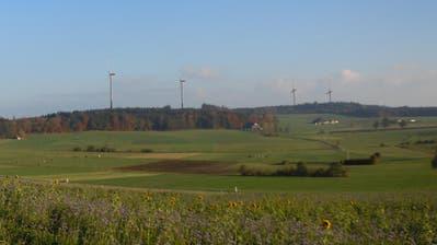 Standorte der geplanten Windräder bei Hitzkirch sind bekannt – und so sehen sie aus der Ferne aus