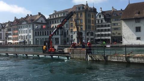 (Leserbild: Walter Buholzer, Luzern, 21. Mai 2019)