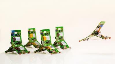 Forschende entwickeln Roboter-Ameisen mit Schwarmintelligenz