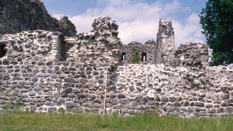 Flicken für die Sicherheit der Besucher der Ruine Helfenberg in Hüttwilen