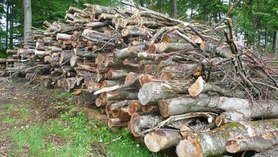 Wer keinen eigenen Wärmeverbund hat, verkauft Energieholz zu gerade mal fünf Franken pro Kubikmeter. (Bild: PD)