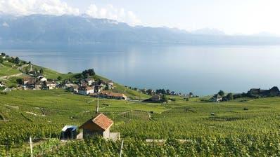 Bastian Baker, TGV und die Expo 02 : Was wissen Sie über die Westschweiz? Unser Quiz vor der Fête des Vignerons