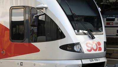Stadler hat Auftrag in Deutschland für 55 Flirt-Züge auf sicher