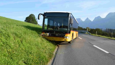 Der Bus kam im Strassenbord zum Stillstand. (Bild: Kapo SG)