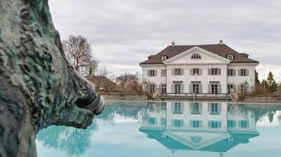 Das verkaufte Waldstück gehörte bislang zum Besitz des Schloss Eugensberg. (Bild: Donato Caspari)