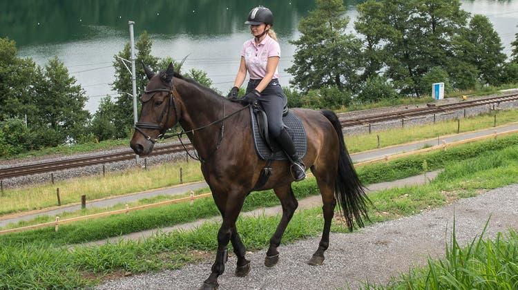 Alessia Kehrer reitet mit dem 14-jährigen «Drumbeg» auf dem neuen Reitweg am Rotsee. (Bild: Dominik Wunderli, 29. Juli 2019)