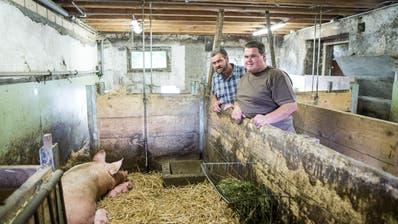 Kaspar und Sohn Balz Hofer wollen die Schweinezucht behalten. (Bild: Manuela Jans-Koch, Meggen 7. Juli 2019)