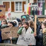 Beim Klimastreik in Frauenfeld wird das Wegschauen kritisiert. (Bild: Andrea Stalder (15. März 2019))