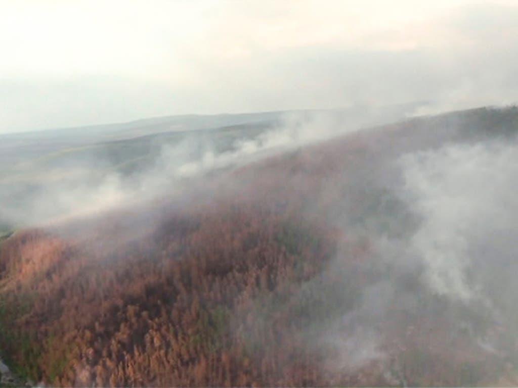 In der auch für das Weltklima wichtigen Taiga wüten die schlimmsten Bränden seit Jahren. (Bild: KEYSTONE/AP RU-RTR Russian Television)