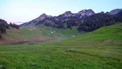 Frösteln im Sommer: Ein Abstecher auf die Alp Hintergräppelen, an den kältesten Ort der Ostschweiz